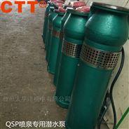 不銹鋼水景QSP噴泉泵 景觀噴泉潛水泵