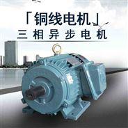 1HP农用抽水泵电机三相异步电动机