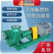 合金電動臥式FZB單級氟塑料化工液體自吸泵