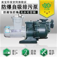 美宝防爆防腐泵,耐腐蚀塑料自吸泵